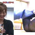 ダマされた大賞2015で菊地亜美のタイツ透けてTバックのお尻丸見え
